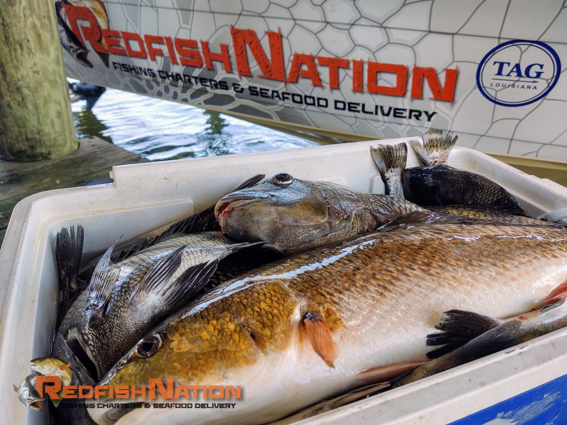 Guided Louisiana Fishing Charter - Redfish Nation Boat - Catch in Ice Chest
